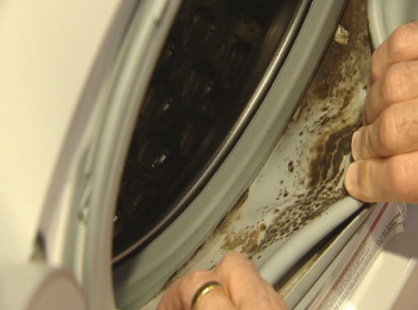 See out earlier article, Defense Verdict in First Whirlpool Mold Litigation Case