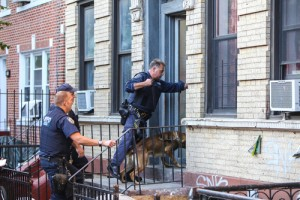 The Supreme Court ruled that dog sniffs of home are searches while drug dealer whose home was dog sniffed waited for appeal.