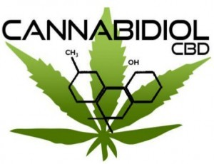 Best High Cannabidiol Strains
